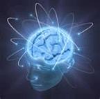 BrainFunction